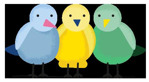om-oss-birds